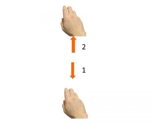 il movimento del 2-4