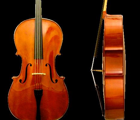 il cello davanti e di profilo